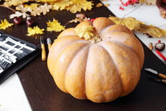 Still life with pumpkin and carving tools Stock Image