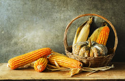 Still Life With pumpkin and corn Royalty Free Stock Photo
