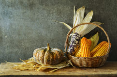 Still Life With pumpkin and corn Royalty Free Stock Photography