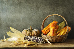 Still Life With pumpkin and corn Stock Photo