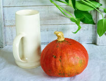 Still life with pumpkin. And cup Stock Photos