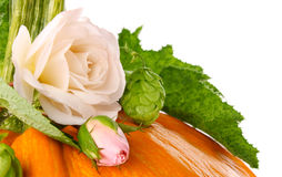 Still life of pumpkin flower and leaf Stock Photo