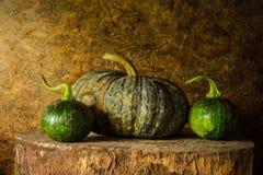 Still life pumpkin Stock Photos