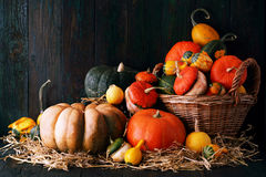 Still life. Pumpkin with a wicker basket Royalty Free Stock Photography
