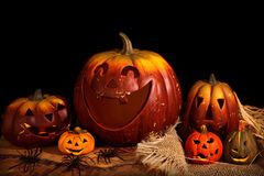 Still life with pumpkins Royalty Free Stock Photo