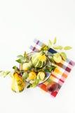 Still life - pumpkins. Apples on a plate Stock Photo