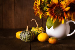Still life with pumpkins Stock Photos