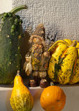 Still life with pumpkins Royalty Free Stock Photos