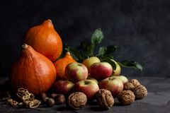 Still life with pumpkins, apples and walnuts on dark background. Thanksgiving. stock image
