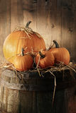 Still life with pumpkins on barrel Royalty Free Stock Images