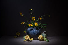 Still life with pumpkins on a black background: flowers on long green stems in old clay jug and broken down into pieces of orange Stock Photo