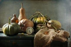 Still life with pumpkins stock photo