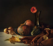 Still life with pumpkins and flower royalty free stock image
