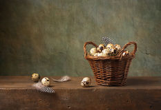 Still life with quail eggs Stock Photo