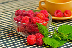 Still life with raspberries Stock Photos
