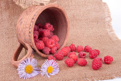 The still life with raspberries Royalty Free Stock Photos