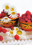 Still-life with a raspberry Stock Photography
