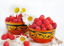 Still-life with a raspberry and camomiles Stock Image