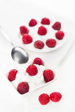Still life with raspberry sour cream dessert. On white linen table cloth, copy space design ready Stock Image