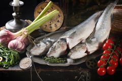 Still life with raw fish. Seabass, herbs, vegetables and vintage clock Royalty Free Stock Image