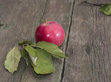Still life the red apple decorated with leaves on a table Royalty Free Stock Image