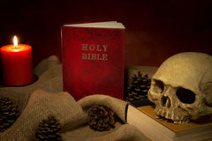 Still life red bible book and dkull Stock Images