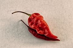 Still life of red chilli pepper Stock Images
