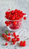 Still life red currant berries in glass mug on marble table background. Selective focus. Copy space.  royalty free stock photos