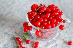Still life red currant berries in glass mug on marble table background. Selective focus. Copy space.  stock photography