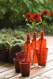 Still life with red glass, plants and roses Stock Photography