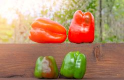 Still life red and green bell peppers on a wooden. Shelf Royalty Free Stock Photo
