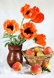 Still life with red oriental poppy flowers and fresh apples Royalty Free Stock Images