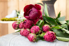 Still life of red peony flowers on wooden background Stock Photos