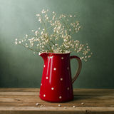 Still life with red pitcher Stock Images