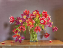 Still life with red and purple tulips. On a light background royalty free stock photography