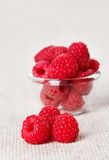Still life with red raspberry and glass bowl Stock Image