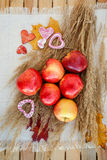 Still life of red ripe apples on the spikelets Royalty Free Stock Photos