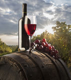 Still life with red wine. On  old table and barrel and bottle on vineyard background Stock Image