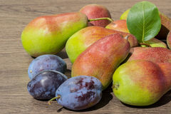 Still life of ripe juicy pears and plums Stock Photos