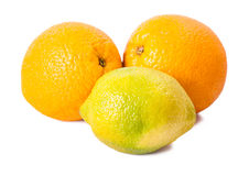 Still life of ripe oranges and lemon Stock Images