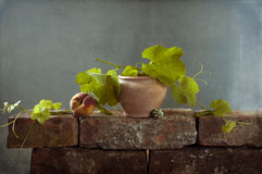 Still life with a ripe peach stock image