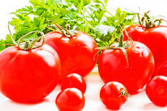 Still life with ripe tomatoes and parsley close up Stock Photos