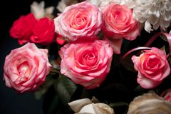 Still life of rose bouquet flower. Beautiful fresh pink roses. Rose Posy Wedding Bouquet. heap of pink and white fresh roses. Street flower market. Different Royalty Free Stock Images