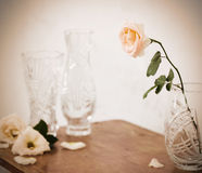 Still-life with roses Stock Photo