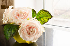 Still life of roses on the table Stock Photography