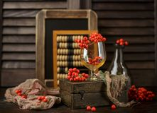 Still life with rowanberries royalty free stock photos