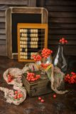 Still life with rowanberries royalty free stock image