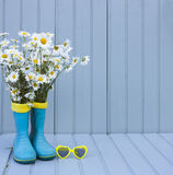 Still life with rubber boots and chamomile Stock Image