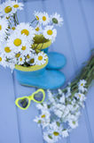 Still life with rubber boots and chamomile Stock Photography