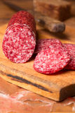 Still life with  sausage Royalty Free Stock Photos